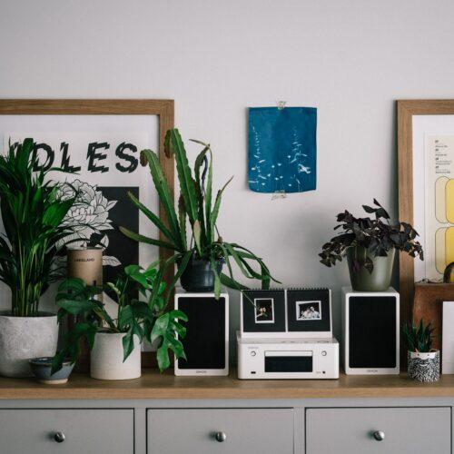 Wieża czy system stereo? Jaki sprzęt kupić do domu?